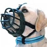 うちの犬が怖いから口輪をしてと言われたんだけど・・・これでどう?