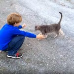 男の子とハグしようとしたら、思わぬ邪魔が入り残念そうな猫