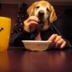 飼い主と二人羽織でお菓子を食べるワンコ(笑)