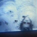 子供部屋に設置した監視カメラが捉えた子供の姿が想像以上に恐ろしい写真 15枚