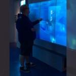 アメリカの「国際スパイ博物館」に設置されたサメの水槽に触れるとヤバイことが起こる