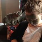 泥パックをした飼い主を認識できない猫の反応