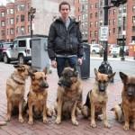 リーシュ無しで6匹のシェパード犬を従えて散歩する男性がスゴイ!