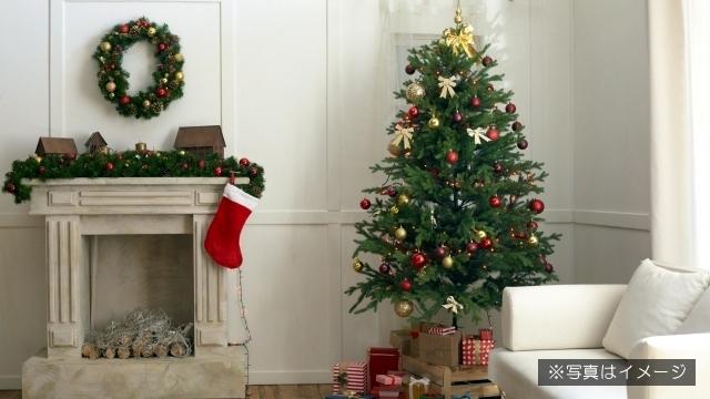 趣味やセンスの異なる夫婦がクリスマスツリーを飾り付けるとこうなるというお話