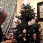 クリスマスシーズンになると猫の居る家庭でよくある微笑ましい光景