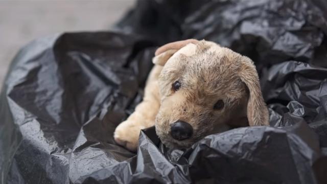 飽きて捨てられた犬のぬいぐるみに込められたメッセージ