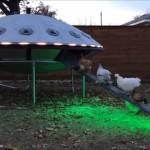 UFO型ニワトリ小屋がすっかりお気に入りのニワトリたち
