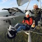 これは楽しそう♪|超軽量動力(飛行)機で鳥と一緒に空を自由に飛び回る男性