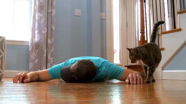 飼い主が死んだ振りをして愛猫の反応を確かめた結果、やっぱりなぁ・・・