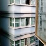 向かいのマンションに住んでいるハスキーとのやり取りがおもしろい!