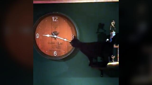 やけに時計が進むので不思議に思ってたけど、やっと原因が明らかに・・・