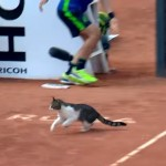 テニスの試合中に乱入!?・・・足早に走り去る珍入者