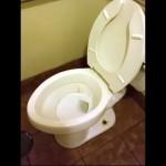流すたびにホラーチックな悲鳴をあげる水洗トイレがおもしろい!