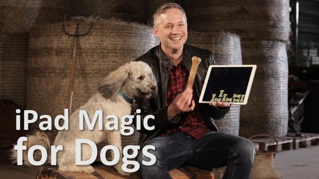 オヤツが現れたり消えたり・・・iPadを使ったマジックに困惑する犬たちがおもしろ可愛い