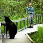 フィッシングに来ていてクマとばったり遭遇した釣り人(米・アラスカ州)