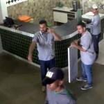 建設労働者の事務所に「ある動物」が侵入 → 全員パニック状態に・・・(ブラジル)