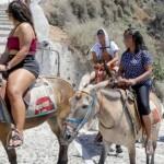 肥満の観光客はロバに乗ることを禁止!?(ギリシャ)