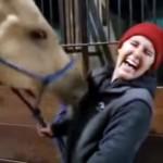 お姉さんの上着のジッパーに興味津々な馬→激しく上げ下げを繰り返す
