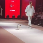 ファッションショーのランウェイに乱入した猫→これが本当のキャットウォークにゃ~!