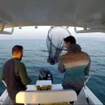 タコをゲットして興奮したのも束の間、釣り人に訪れたショッキングな結末