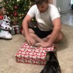 プレゼントにはしゃぎ過ぎて猫の機嫌を損ねてしまった飼い主