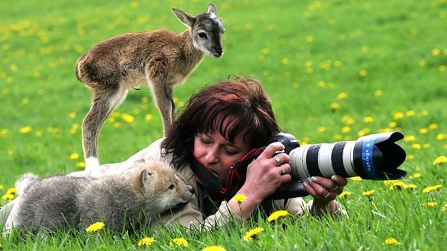 写真家と動物たちの予期せぬ嬉しい出会い・・・微笑ましいワイルドライフ写真集