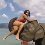 ゾウの背中に乗れると期待したのに、思惑がはずれたお姉さん