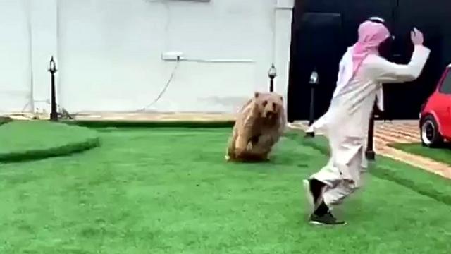 クマと追いかけっこをするアラブの男性・・・楽しそうだけどやっぱ怖い!