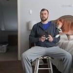 ゲームに夢中な飼い主に無視されて哀しそうな愛犬