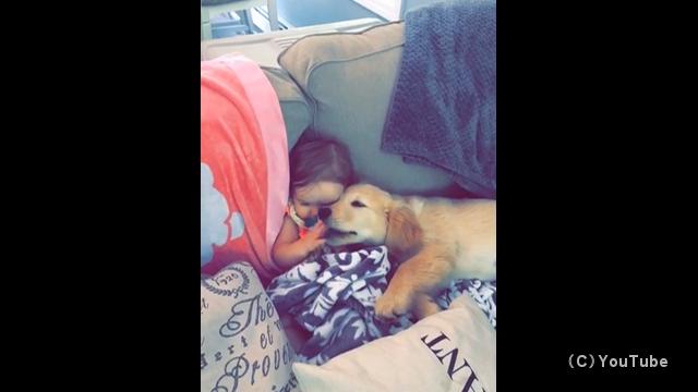 強力なボンドでくっつき合った女の子と子犬の微笑ましい光景