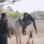 乗馬に失敗してもフォローしてくれる馬