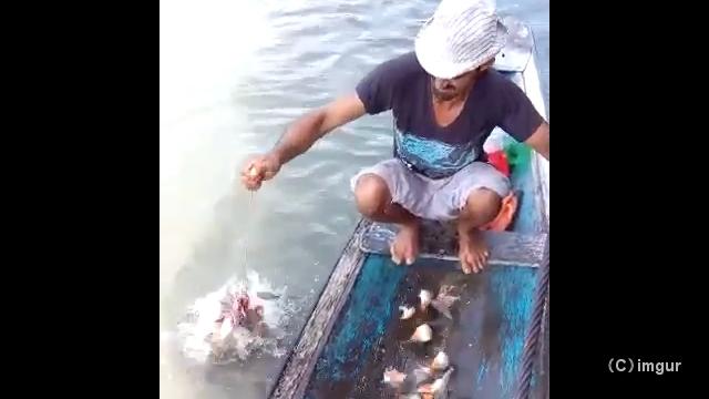 小船の梁に乗ってピラニアを釣る男性がちょっぴり怖い