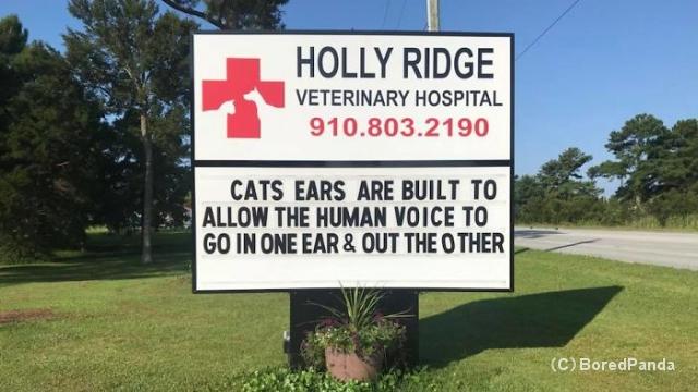 猫の本質を捉えた動物病院の看板に書かれた文言がおもしろい