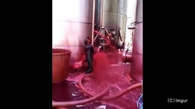 赤ワインの貯蔵タンクが亀裂!… 大量のワインが噴出して辺りは地獄のようなありさまに