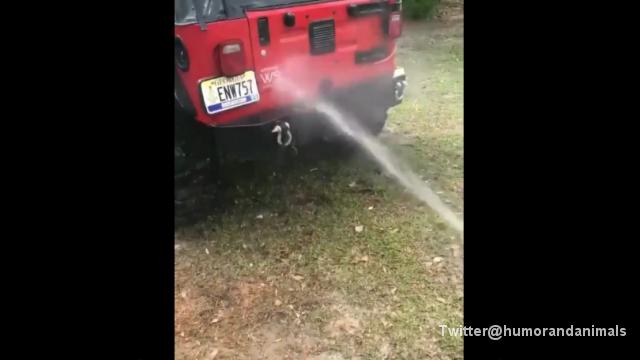 車を洗いたいのに気が散ってはかどらないという男性…その理由は?