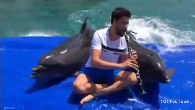 イルカの鳴き声に合わせたクラリネット演奏がエキセントリックでおもしろい