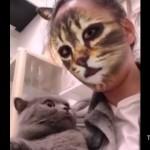 スマホのフィルター機能で猫顔に変身した飼い主を見た猫の反応がおもしろい